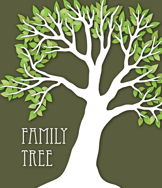 how to build a family tree graphic