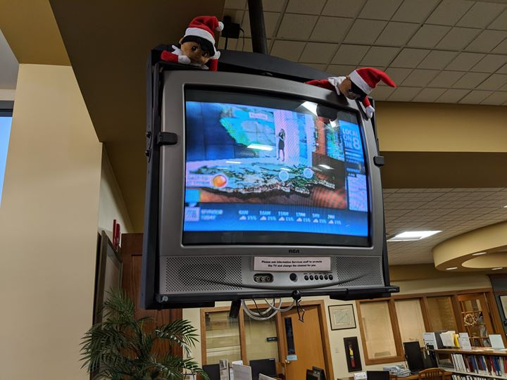 Did you find Dewey and LC, watching the weather to see if there would be snow?  They found a new hid...