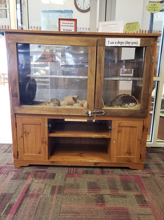 We are looking for a donation to replace our current degu habitat. We need a cabinet/TV stand to con...